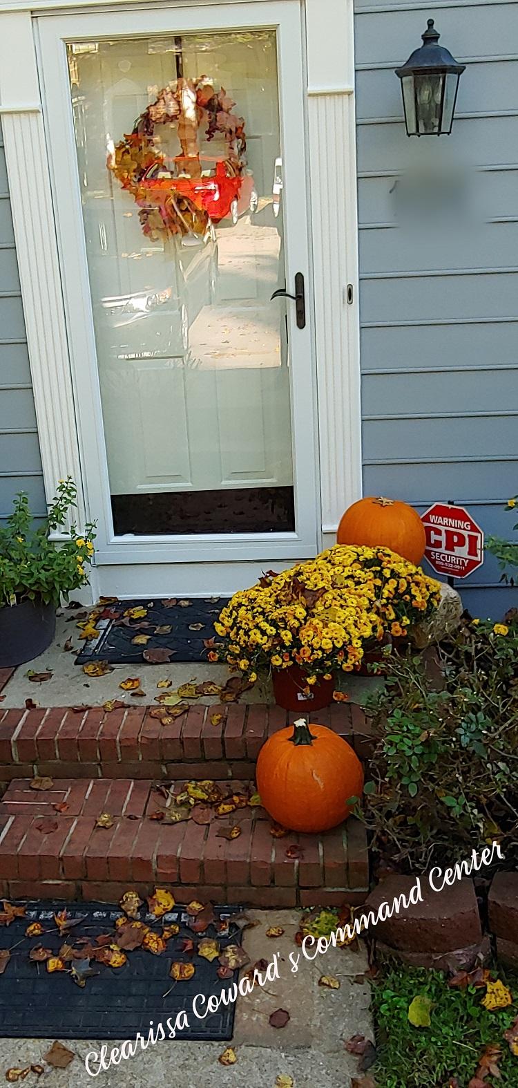 Fall Porches Mine