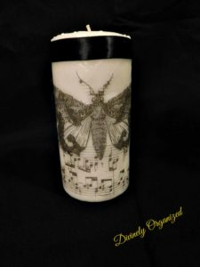 Black Butterfly Candle Blackground Close Up PM